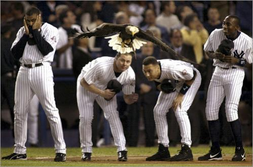 Bernie Williams, Jason Giambi, Derek Jeter, and Alphonso Soriano of the New York Yankees react to the Eagle 'Challenger' coming a little too close while landing during opening ceremonies for Game One of the American League Championship Series in New York's Yankee Stadium. The eagle was spooked by a pre-game military jet flyover.