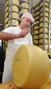 An employee inspects a wheel of cheese branded as Parmesan at a cheese factory in Kissleg, Germany. A ruling by the European Court of Justice means the Germans will have to rename their cheese.
