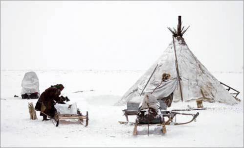 With her dog standing watch, a Nenets woman works outside near the village of Yar-Sale.