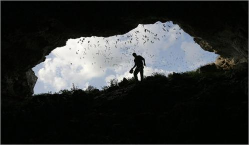 Boston University professor and bat expert Thomas Kunz approaches the entrance of Frio Cave near Uvalde, Texas as the first emergance of Brazilian free-tailed bats start to leave the cave for an evening of insect hunting.
