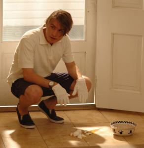Brady Corbet (above) plays a psychopath who, along with a friend, tortures a family at their lake house in 'Funny Games.'