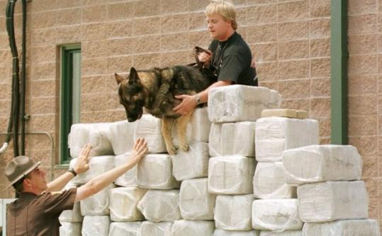 Rook, a drug-sniffing police dog, tried to jump over bundles of cocaine seized by authorities in Greencastle, Ind.