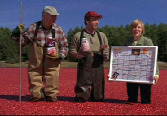 An Ocean Spray ad was filmed in a working bog in Carver.
