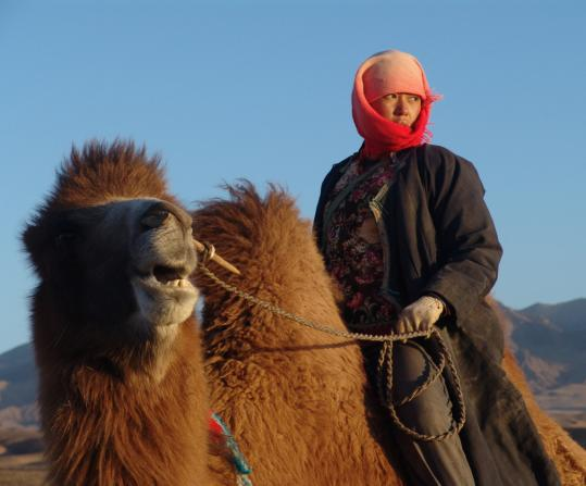 The life of Tuya (Yu Nan) changes drastically after her husband is crippled.
