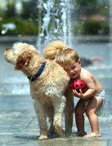 One-year-old Luke McDonald of Boston romped with his dog yesterday at the fountain at the North End Park on the Greenway.