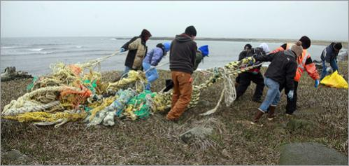 St. Paul residents drag a commercial fishing net from a beach on St. Paul Island, Alaska Monday, June 2, 2008.
