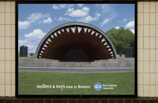 One of the ads for the New England Aquarium's shark exhibit imagines the Hatch Shell as a sharp-toothed gaping mouth.