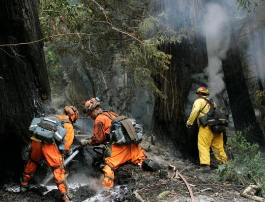 Firefighters hosed down burning redwood trees along Highway 1 in Big Sur, C