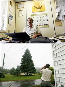 Ross Pentz is Christmas Tree Extension Specialist at Nova Scotia's Department of Natural Resources. Which means he is the guy in charge of finding the giant spruce sent to Boston each year for our city's big holiday tree lighting ceremony.