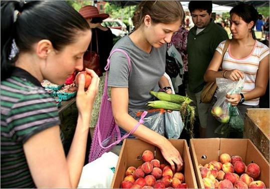 From left, Bronwen Blaney, Liz Main, Lea Lupkin, and Scune Carrington selected produce at The Farmers' Market @ Harvard last Tuesday. Harvard dining halls also serve organic produce and compost food waste.
