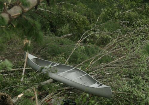 A canoe was thrown atop a fallen tree in Deerfield.