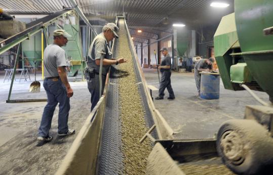 Pellets compressed from sawdust are sent by conveyor to a cooling processor in Corinth, Maine.