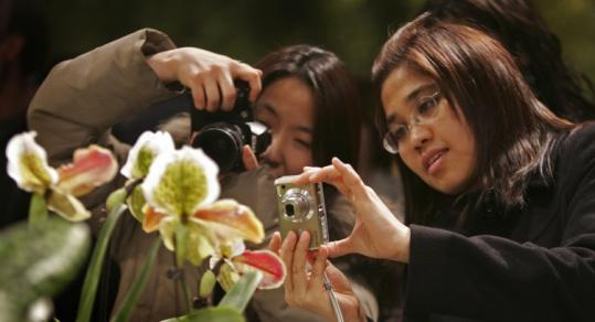 Piyatida Hoisangwan (left) and Nonglak Meethong took pictures at this year's New England Flower Show in March.
