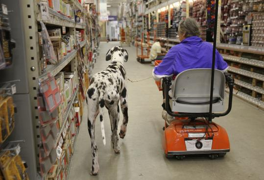 Carlene White of the Service Dog Project brought a Great Dane to Home Depot for training on how to assist people with impaired mobility.