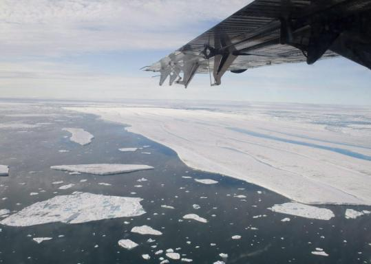 Large pieces of ice were seen drifting away from the Ward Hunt Ice Shelf in this July photo. A huge chunk of ice shelf has broken away from Ellesmere Island in Canada's Arctic coast.