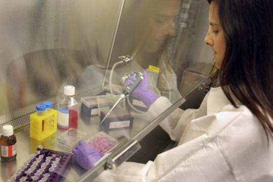 Robin K. Meray tests compounds at Link, which is developing a drug for Alzheimer's and Parkinson's.