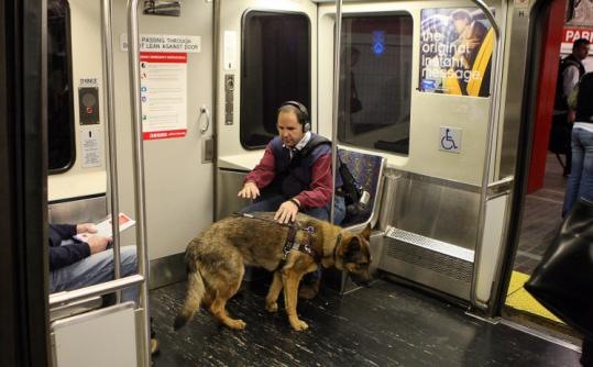 Albert Elia with his guide dog, Zion, on a train at Park Street. He said that 30 percent of the time no one offers him a seat.