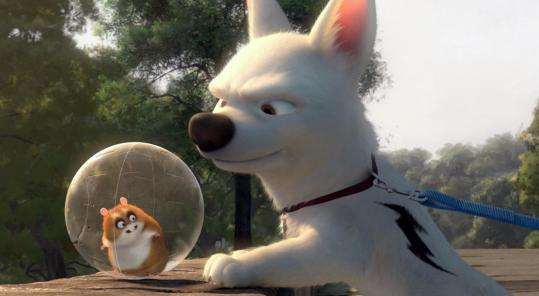 Bolt (with Rhino, a hamster in a plastic ball) is the star of a hit TV show.