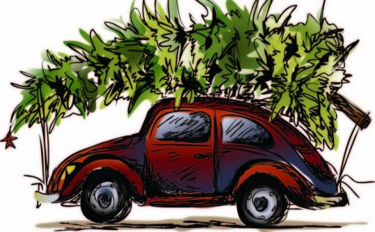 how to carry your christmas tree on car