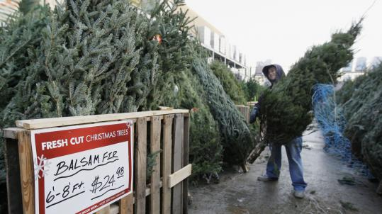 A Home Depot worker in Carol Stream, Ill., sorts trees at the store's lot. Home Depot is the nation's largest retailer of fresh-cut Christmas trees.
