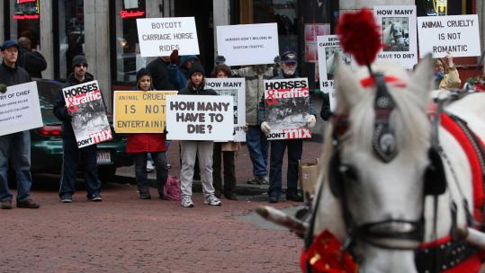 Massachusetts Animal Rights Coalition members quietly protested yesterday at Faneuil Hall.