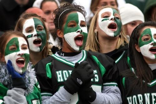 Mansfield fans cheer a Hornets touchdown.