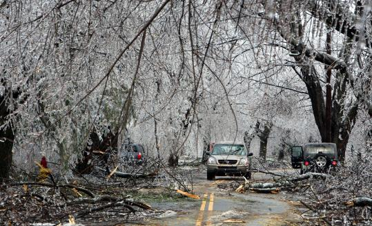 Felled branches lay on Brattle Street in Worcester yesterday after the ice storm. Governor Deval Patrick declared a state of emergency in Massachusetts.