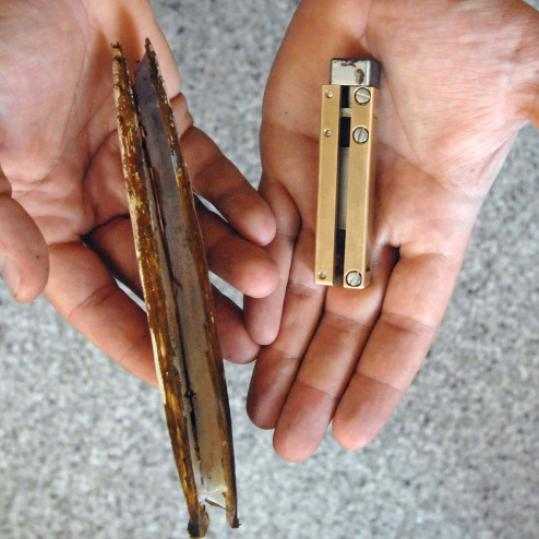 Razor clam (left) and the RoboClam may lead to new anchoring technologies.