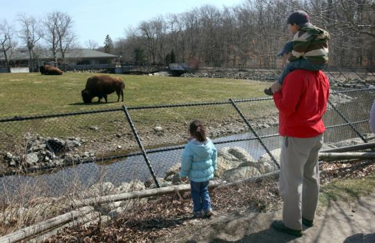 A report has pointed to animals at Buttonwood Zoo Park as sources of pollution in nearby Buzzards Bay.