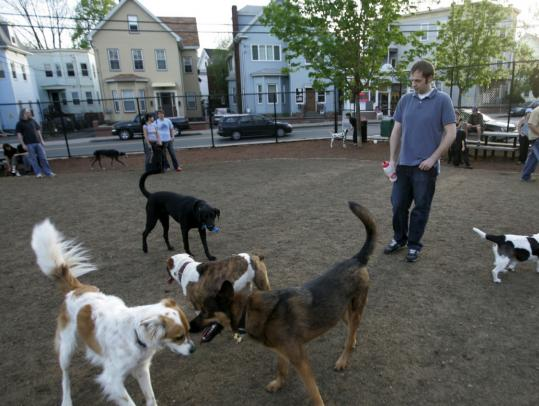 Mayor Joe Curtatone said quality-of-life initiatives such as the recent renovation of Nunziato Field, now popular with kickball teams and dog owners, will be spared from the budget ax.