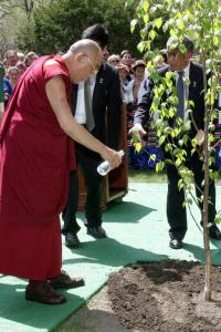 After covering a birch tree's roots with soil at Harvard, the Dalai Lama then watered the new planting.