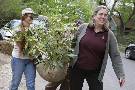Suzanne Kreiter/Globe StaffAmy Bauman (right), who started the nonprofit greenGoat after getting laid off, carried plants with Beth Lowe of Grove Hill Gardens.