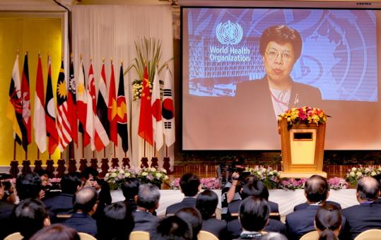 Margaret Chan spoke Friday as the 10-member Association of Southeast Asian Nations plus China, Japan, and South Korea met to forge a common front in the fight against the flu virus.
