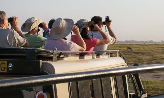 An open-air safari in Tanzania's Serengeti National Park fits the criteria for a group tour.
