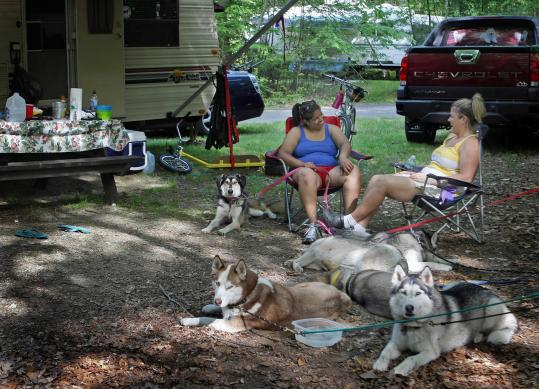 Corah Dahl of Beverly and Rhonda Spaulding of Springfield relaxed with their dogs at Wompatuck State Park in Hingham, which is one of the many campsites in the region expected to see an influx of newcomers this summer.