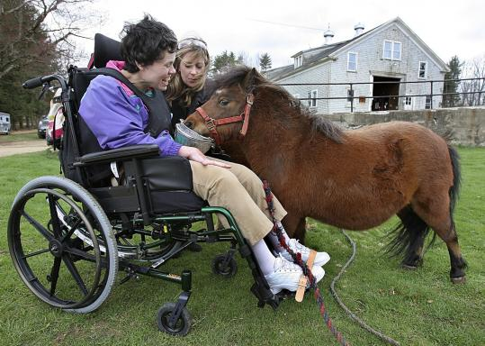 Deb Berglund, a disabled adult, and Alice McKissick, of Rehabilitative Resources Inc., fed a miniature horse at Elm Hill Farm in Brookfield.