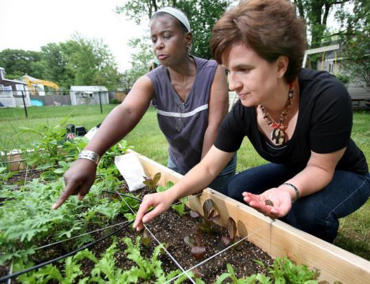 TOM HERDE/GLOBE STAFFDemita Frazier (left) of Green City Growers works with Stacey Barker on Barker's backyard garden.