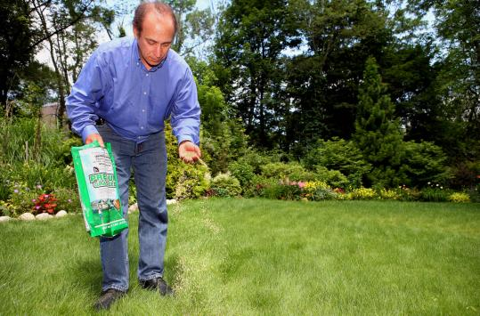 Jackson Madnick spread his product, Pearl's Premium ultra low maintenance grass seed, on a client's lawn in Weston yesterday.