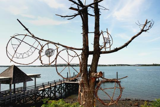 Art created by visitors to Bumpkin Island by using Oriental bittersweet, an invasive vine abundant there.