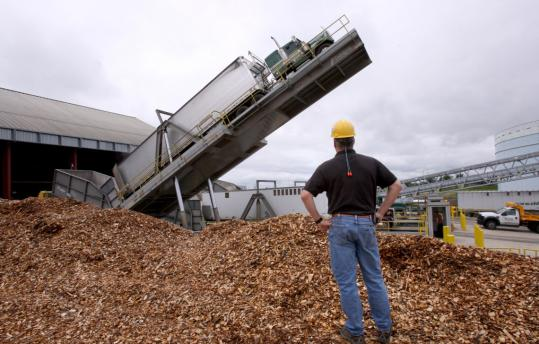 Procurement forester Richard Roy watched as a truck was raised up to dump its load of wood chips at Northern Wood Power at Schiller Station in Portsmouth, N.H.