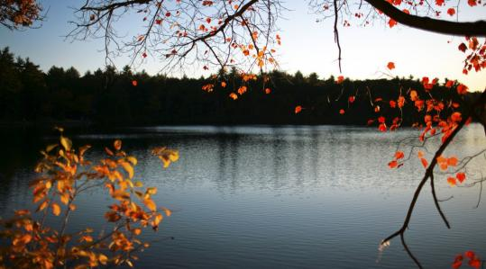 Like other kettle lakes, idyllic Walden Pond in Concord is sensitive to pollution.
