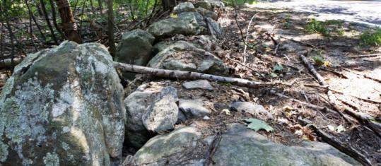 The remnants of a stone wall in North Hampton, N.H.
