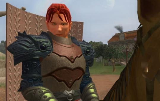 The film tracks devotees of Everquest and other games.