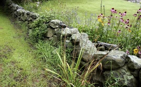A stone wall on the property of Ben Aronson in Framingham.