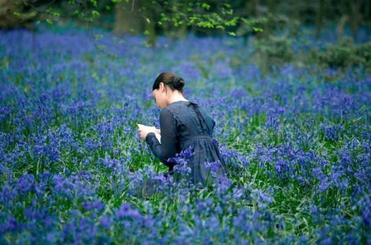 "Abbie Cornish stars as Fanny Brawne, the object of the poet John Keats's love in ""Bright Star.''"