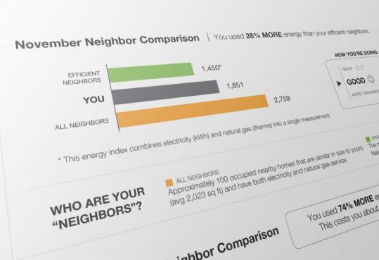 The monthly report to customers will compare that household's energy use with area households, but not identify other users.