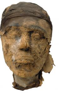 A mummy's head is the focus of the new MFA exhibit.
