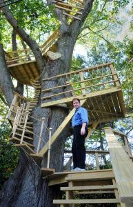 Michael Chapman has until Nov. 2 to take down the treehouse he recently built in his yard, or face a fine of $300 a day.