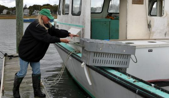 Mary Sullivan, fired by Brandeis after 32 years, now works on a lobster boat.