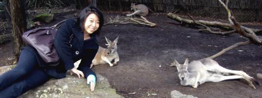 Sang-Hee Min meets some marsupials beyond the dinner table.